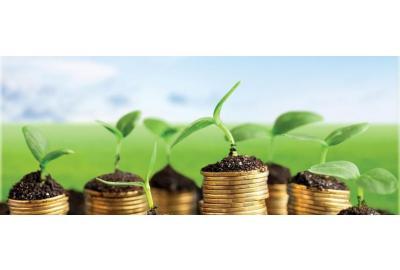Gieo những hạt giống tốt cho thị trường chứng khoán